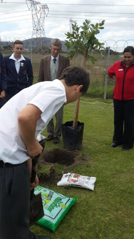 Planting trees at Edgemead High with Stor-Age