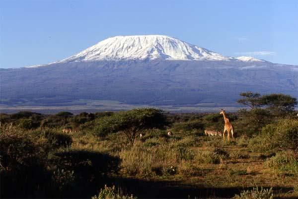 kilimanjaro charity